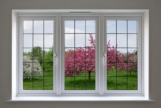 Large multi pane windows house pinterest window for House window replacement