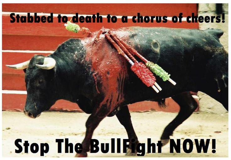 Please Sign & RT: Tell Prime Minister of Spain To End All Bullfighting In Spain! https://www.change.org/p/prime-minister-of-spain-mariano-rajoy-brey-end-all-bullfighting-in-spain?recruiter=85233315&utm_source=share_petition&utm_medium=twitter&utm_campaign=share_twitter_responsive… @UKChange