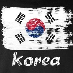 korean flag sale