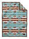 A Real Pendelton Blanket