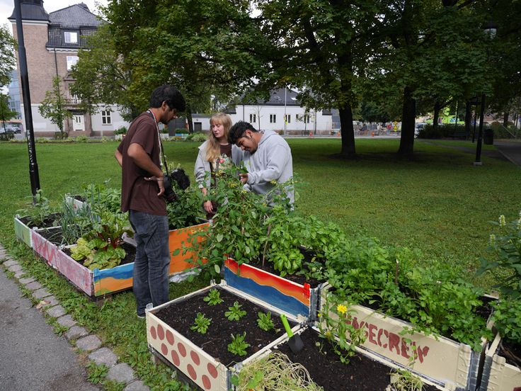 plantekasser-i-Gamle-Oslo-1000-px_full.jpg (1000×750)