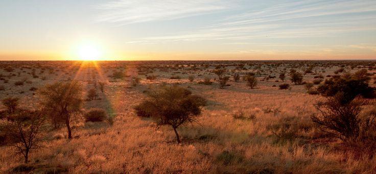Namibia Africa - Kalahari desert sunrise by Dennis Wehrmann on 500px