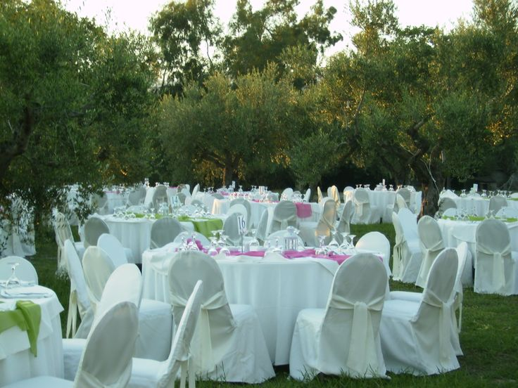 Let us plan an amazing #wedding reception for you !