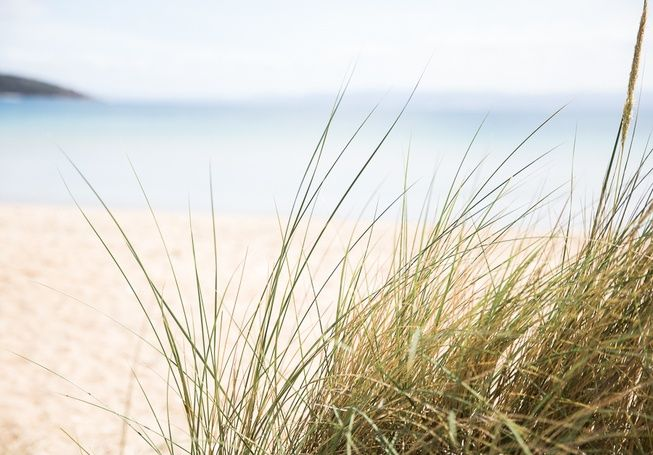 Friendly Beaches on Tassie's East Coast with it's stunning white sand & crystal clear water.