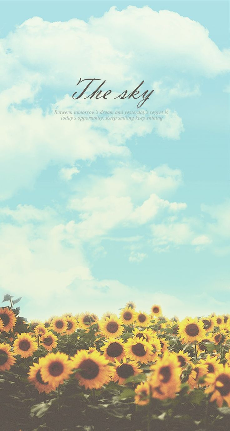 Sunflower Sky Keep Shining iPhone 6 Plus HD Wallpaper