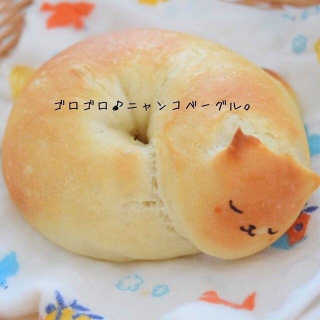 かわいい寝顔に癒される猫パン♪