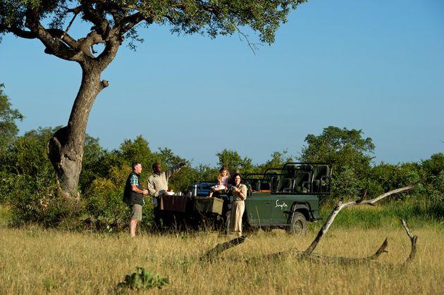 #Singita family safari  www.safar2africa.com