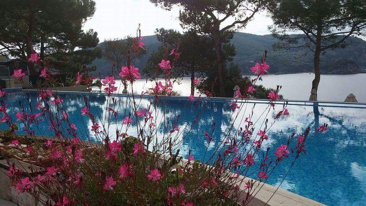 Akrotiri beach hotel - pool