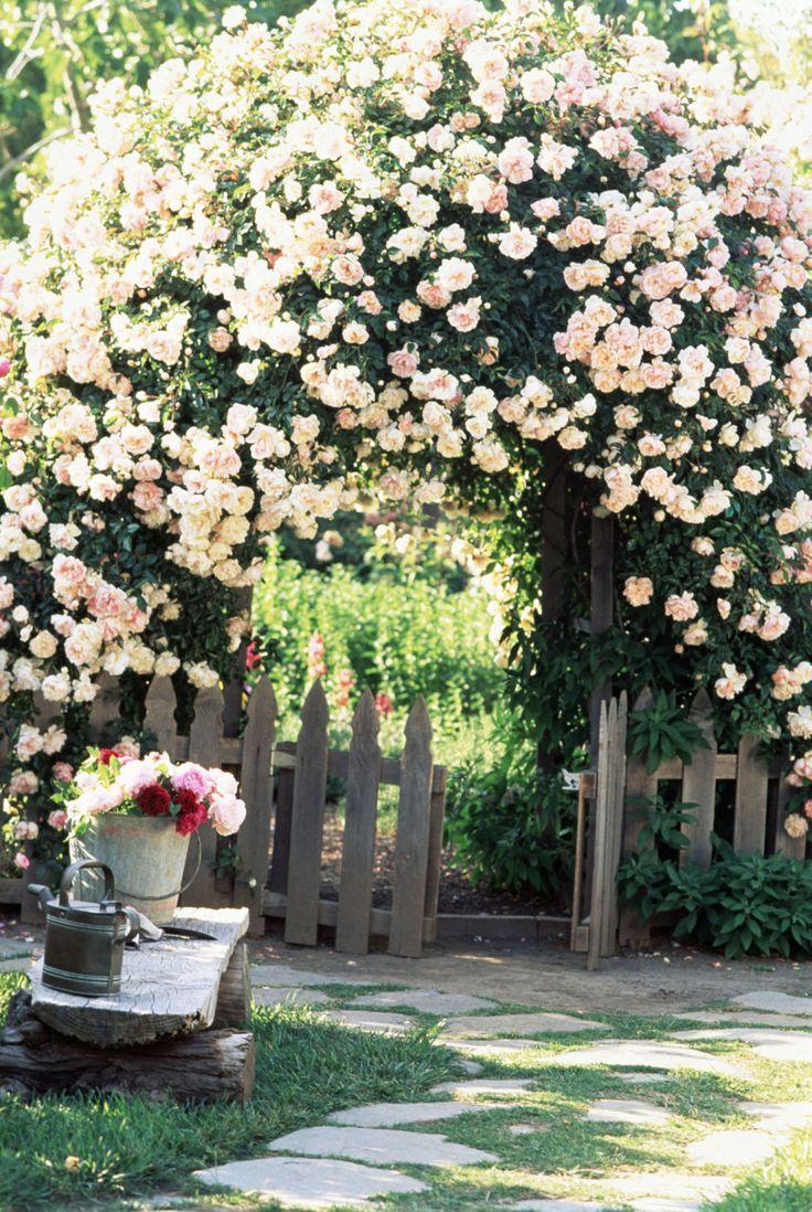 Tiarella cordifolia a way to garden - 9 Lovely Ways To Make A Cottage Style Garden