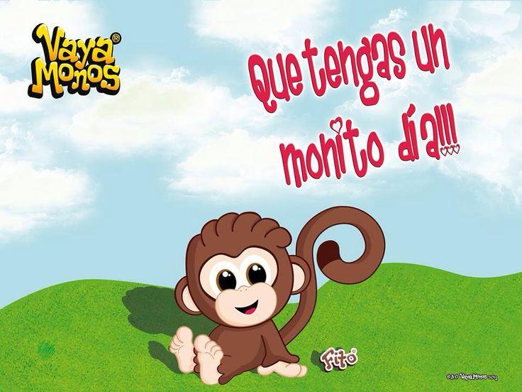 Frases De Mono: Mejores 62 Imágenes De Vaya Monos En Pinterest