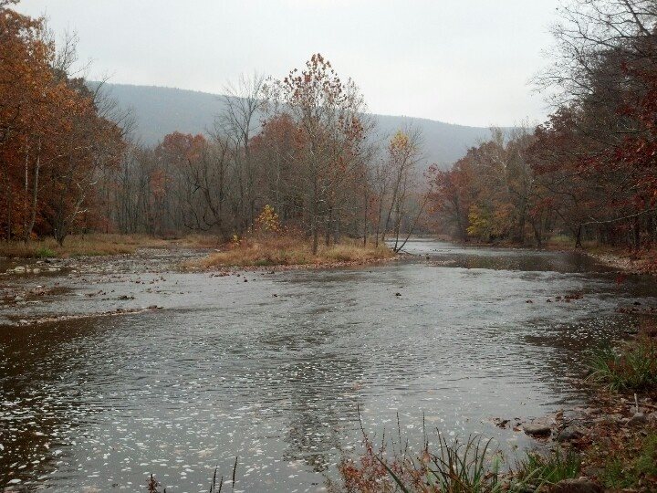 26 best images about penns creek on pinterest image for Fishing creek pa