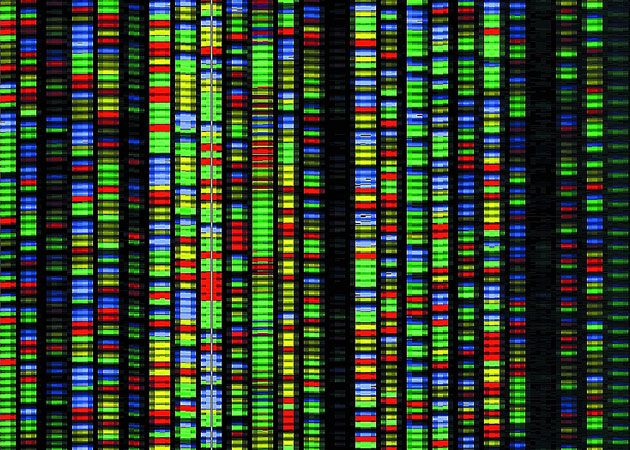 Human DNA sequencing