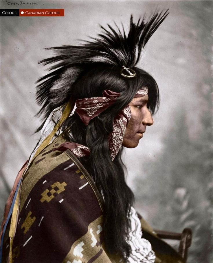 Manitoba Native Plants: A Cree Man In Maple Creek, Sask. In 1903 (33 Colourized