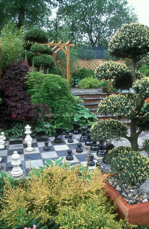 Games In The Garden   Giant Ornamental Chess Set And Board, Trees, Shrubs,