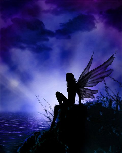Night Fairy.