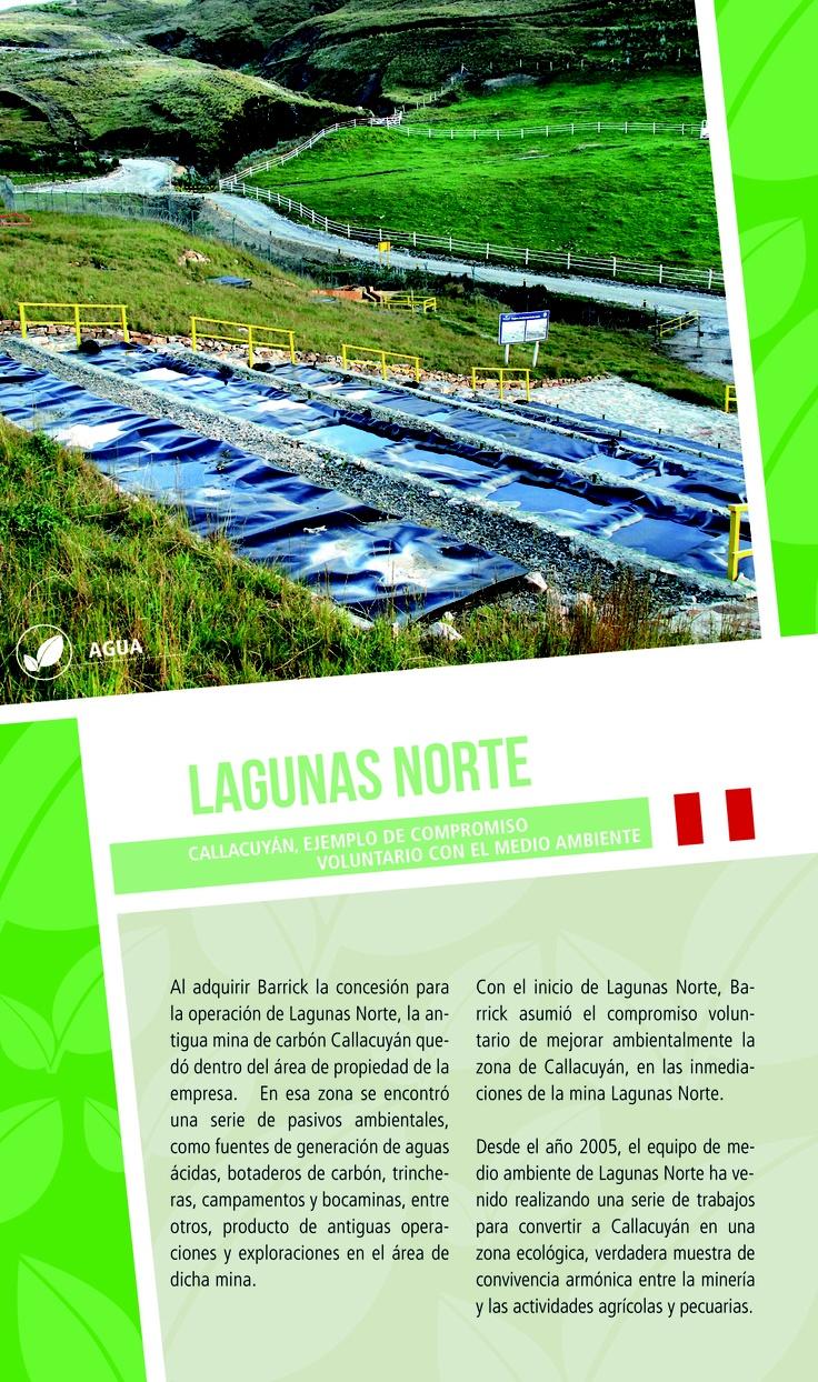 Callacuyán, ejemplo de compromiso voluntario con el medioambiente -  Infografía completa en el sitio de Barrick Sudamérica http://barricksudamerica.com