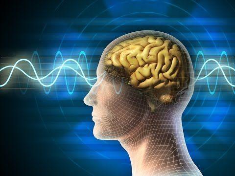 Wissenschaft bestätigt Wirkung von Gedanken und Gefühlen (Die Macht der Gedanken und Gefühle) - YouTube