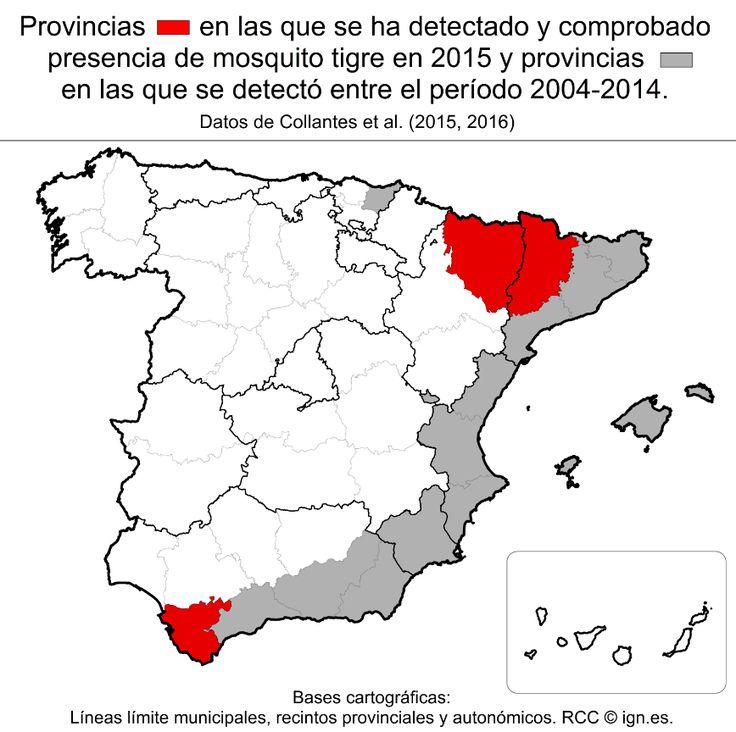 El mosquito tigre conoce todas las provincias de la costa mediterránea española