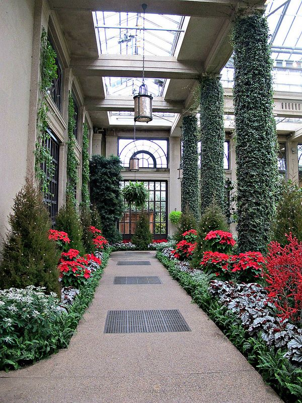 17 best images about creative gardens on pinterest gardens wisteria and longwood gardens for Longwood gardens discount tickets