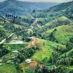 The Birth of a Province: Puncak Andalas, West Sumatra, Indonesia by Keith Bettinger.