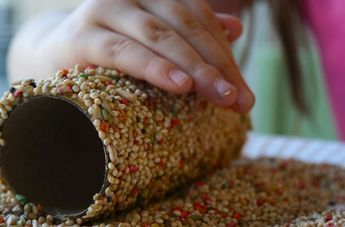 Cómo hacer un comedero de #pájaros para tu #jardín