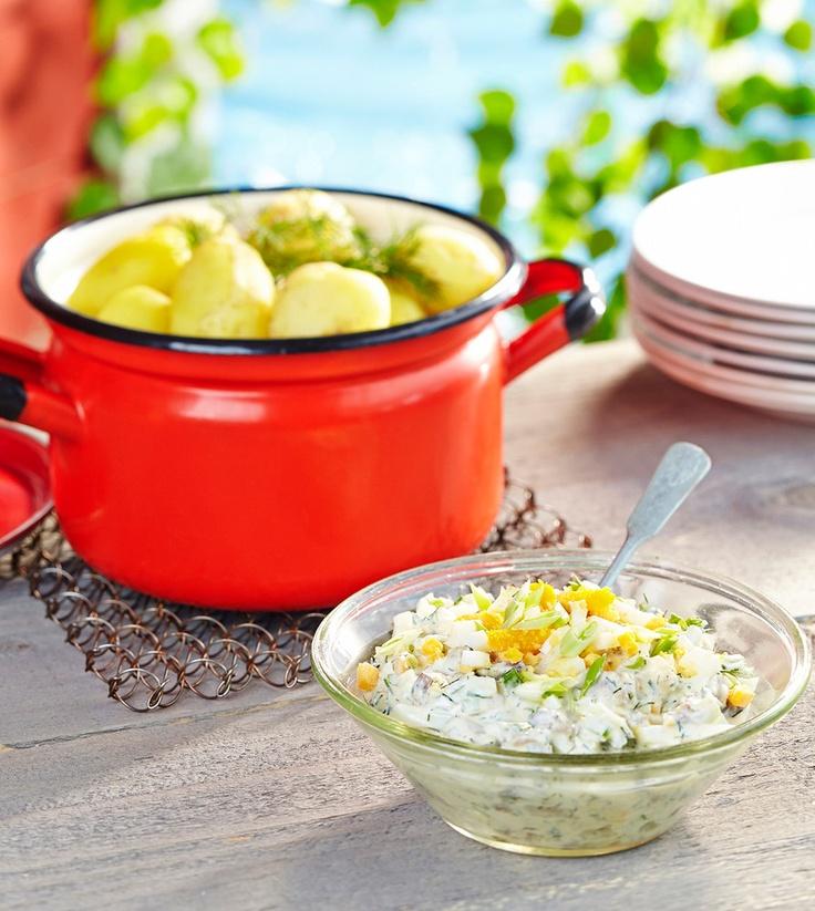 Piparjuurisilli saa säväyksen raastetusta piparjuuresta. Silli sopii tarjottavaksi uusien perunoiden tai ruisleivän kanssa.