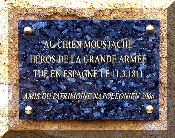 cementerio_de_mascotas (cementerio de mascotas París)