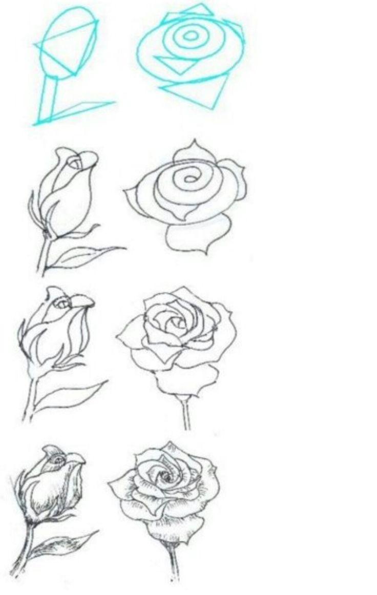 того, рисунок розы поэтапно фото основная