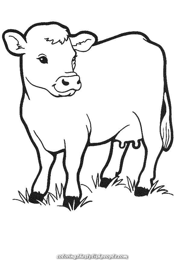 Excellent Free Printable Cow Coloring Pages For Teenagers Cow Coloring Pages Farm Coloring Pages Coloring Pictures Of Animals