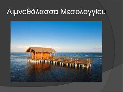 PATRINAKI: SOS ΑΠΟ ΤΗΝ ΛΙΜΝΟΘΑΛΑΣΣΑ ΜΕΣΟΛΟΓΓΙΟΥ - ΑΙΤΩΛΙΚΟΥ.....