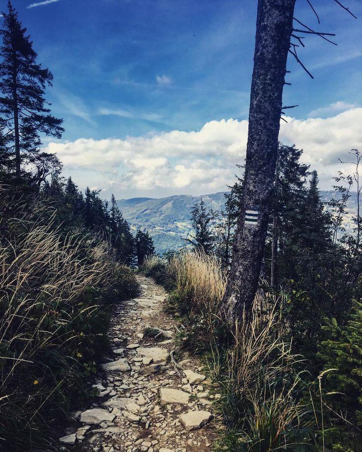 #takaniedziela #naszlaku #skrzyczne #szczyrk #gory #trekking #cudownie #polishmountains #dobrydzien #energia #drogajestcelem #collectmoments