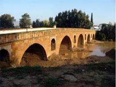 Medjerda River bridge