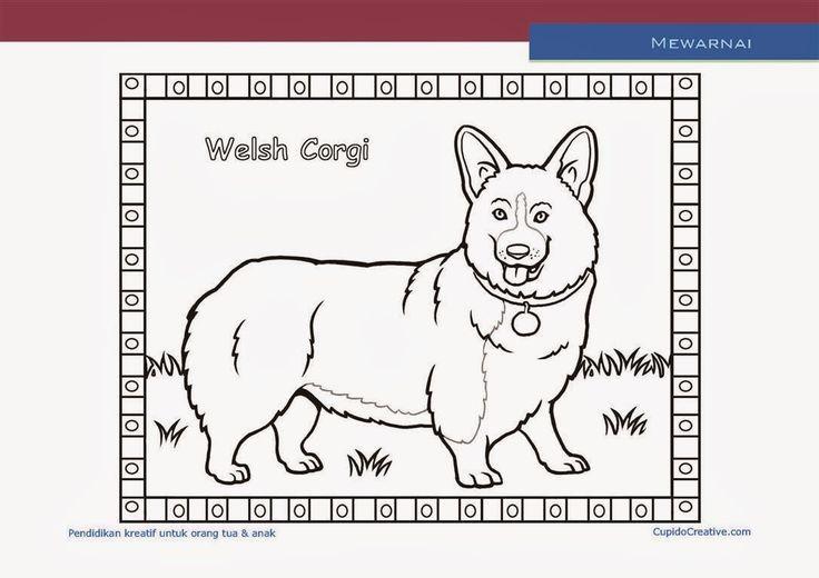 kerajinan anak paud (balita, TK, SD), mewarnai anjing welsh corgi