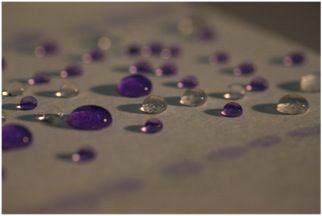 Waterproof paper (photo courtesy of IIT)    Dr. Roberto Cingolani, Scientific Director at the Istituto Italiano di Tecnologia (IIT) in Genoa, Italy and his team have created a nanotechnological process that makes paper waterproof, magnetic, antibacterial without modifying any  basic properties of the paper. Meaning this isn't some chemical monstrosity, it's just still paper you can print and draw on, recycle or make a paper airplane.