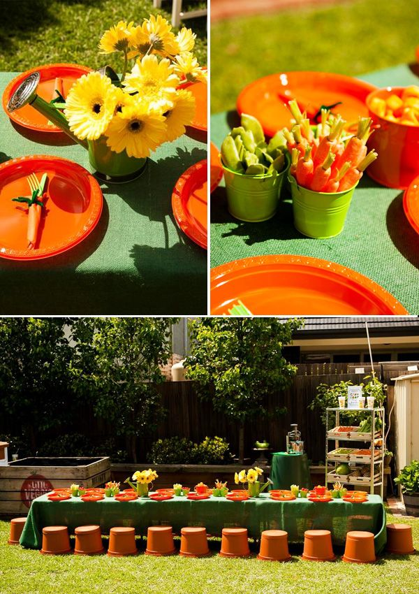 Insanely creative veggie patch birthday party plant pots for Veggie patch ideas