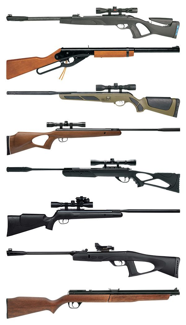 Doing some air rifle shooting? Check out these models before you hit the range.