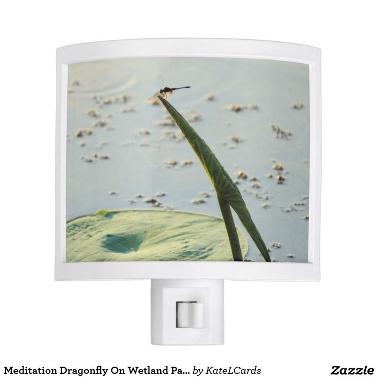 Meditation Dragonfly On Wetland Park Lily Pad Night Light