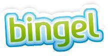 Met Bingel kan je de leerlingen op een online platform laten werken. Zelf kan je dan zien hoever de leerlingen van je klas al zitten en waar er problemen zijn.