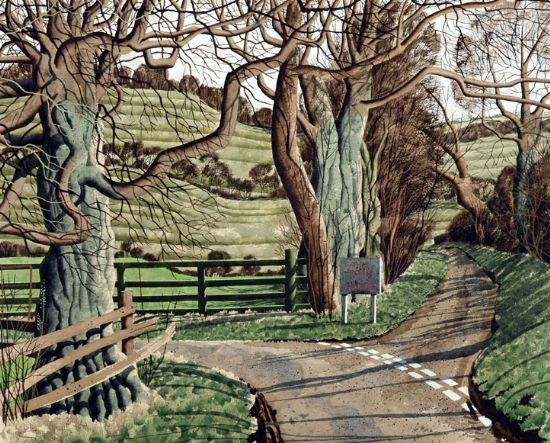 Broadmires by Simon Palmer