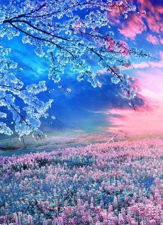世界は美しい色で溢れている おしゃれまとめの人気アイデア