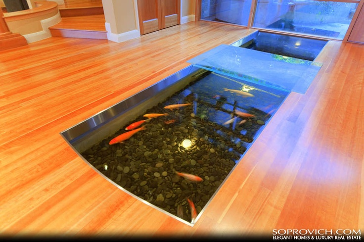 Indoor outdoor koi pond koi pond indoor pinterest for Koi pond in house