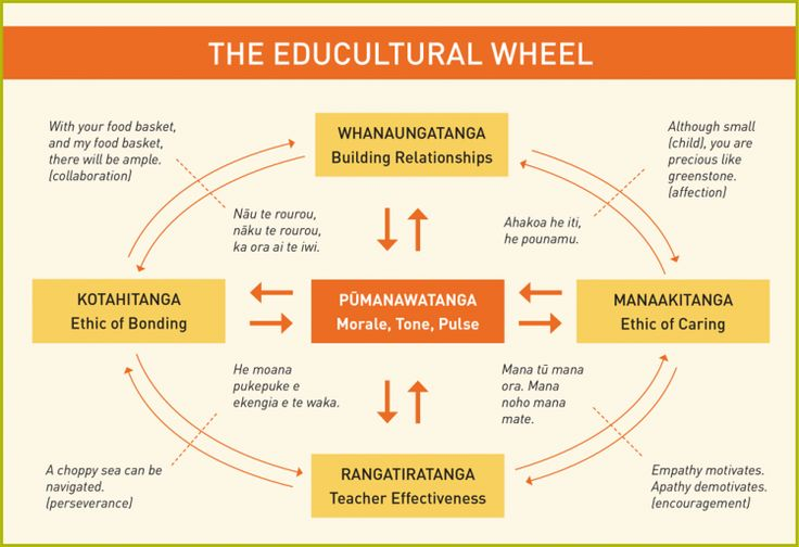 This website provides information about building a school community and culture. It presents Macfarlanes Educultural Wheel of effective pedagogy and inclusive practice.