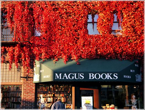 Magus Books, Seattle #bookshop #indie #local