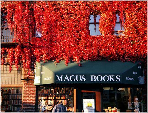 Magus Books, Seattle #bookshop #indie #local