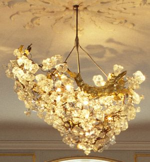 Beautiful Lighting....Most amazing chandelier EVER! The perfect mix of glamour and organic lighting