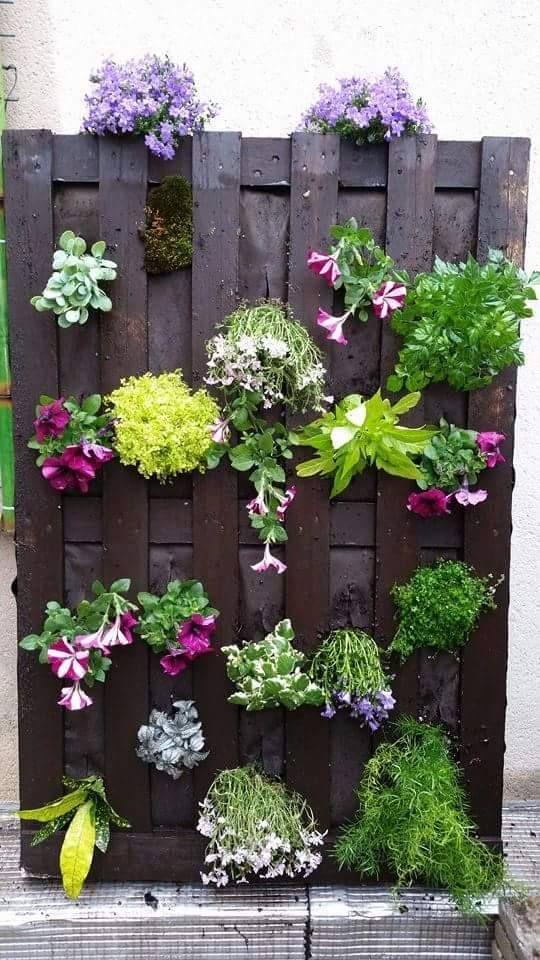 les 190 meilleures images propos de recup palette jardin etc sur pinterest jardins. Black Bedroom Furniture Sets. Home Design Ideas