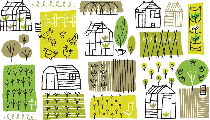 Allotments by Sean Sims (also available in brown)
