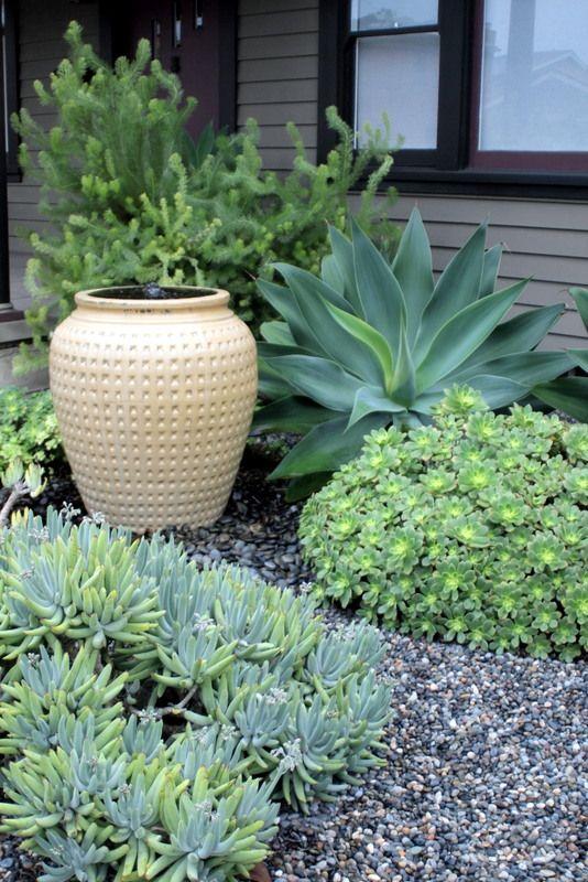 M s de 25 ideas fant sticas sobre flores de jard n frontal for Paisajismo patios