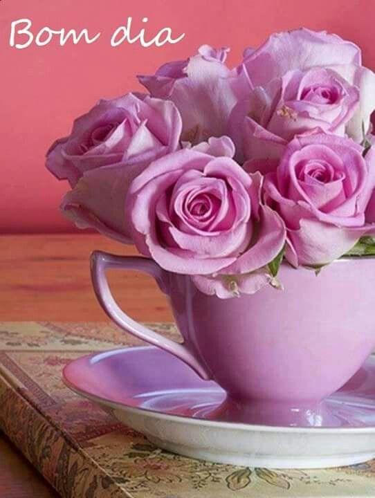 Xicara lilas