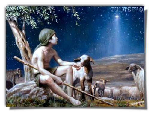 """""""O bom pastor conhece as suas ovelhas, as chamam pelo nome e elas respondem, porque conhecem a sua voz . . ."""" - Jo 10. - """"Aquele que vigia modestamente algumas ovelhas sob as estrelas, se tem consciência de seu papel, descobre que não é apenas um servidor. É uma sentinela. E cada sentinela é responsável por todo o império."""" - """"Even the simple shepherd modestly watching his sheep under the stars would discover, once he understood the part he was playing, that he was ... -  Saint-Exupéry."""